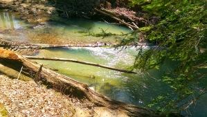 Pool in the Creek
